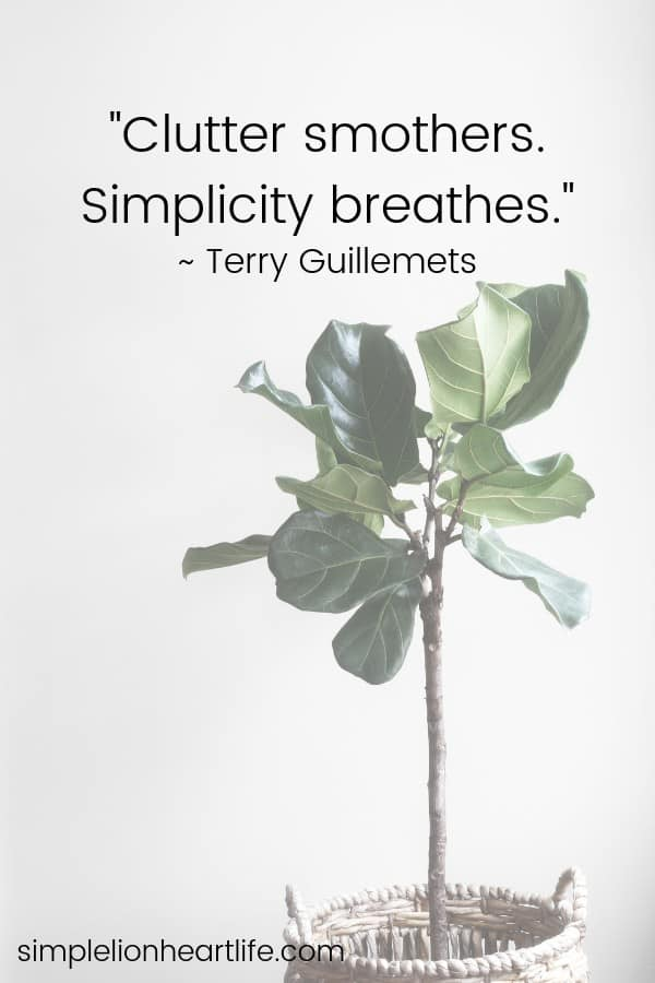 Simplicity quotes: