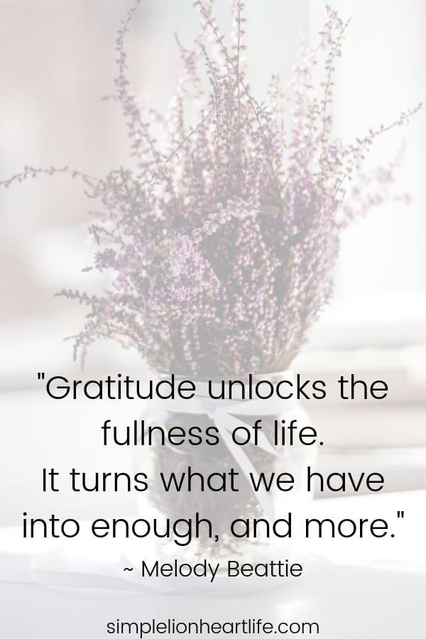 Gratitude quotes: